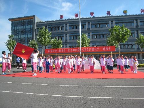 张镇中小举行新队员入队仪式