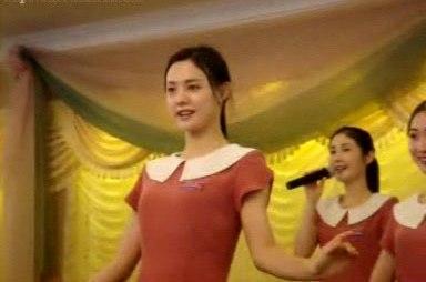 在位于柬埔寨暹粒的承担着赚取朝鲜外汇的某朝鲜饭店