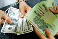 任志刚:香港应检讨联系汇率制度