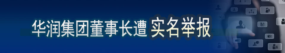华润集团董事长遭新华社记者实名举报