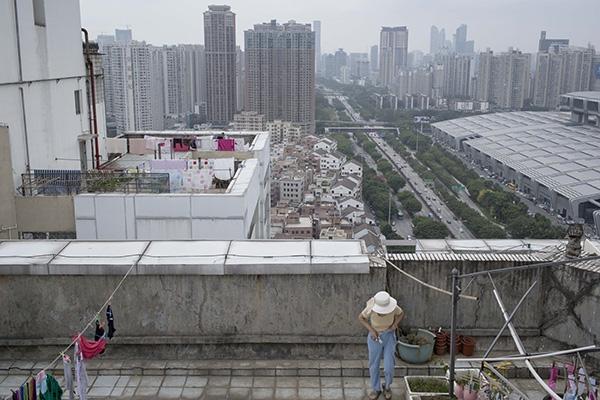 2016年4月3日,深圳市福田区一栋高层住宅楼的露台,一位住户正在打理她种植的葱苗,远处的矮房子是一个名为皇岗的城中村,和高层电梯楼相比,同样面积的房子租价往往只有一半左右。 澎湃新闻记者周平浪图
